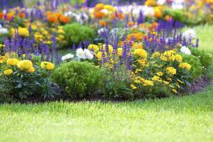 A Flower Garden Flower Gardening How To Start A Flower Garden