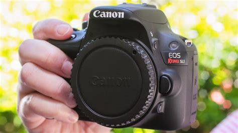 canon eos rebel sl1 dslr canon eos rebel sl1 review a dslr for dainty cnet