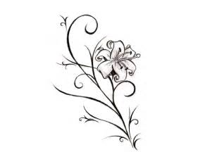 Galerry aster flower coloring page
