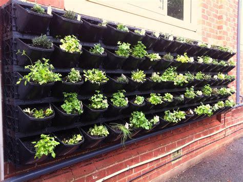 Small Vegetable Garden Plans To Consider Small Garden Vegetables