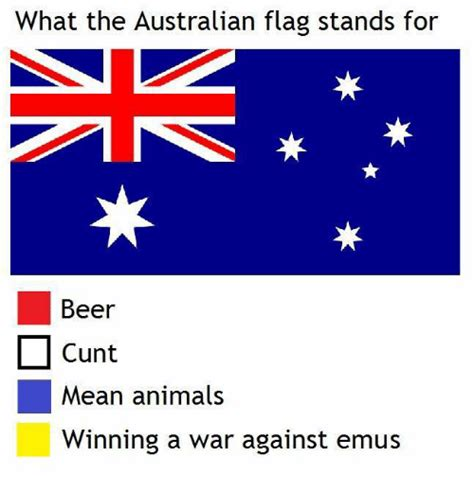 What Does Memes Stand For - what the australian flag stands for beer l cunt mean