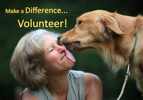 service dogs volunteer events the humane society of greenwood page 4
