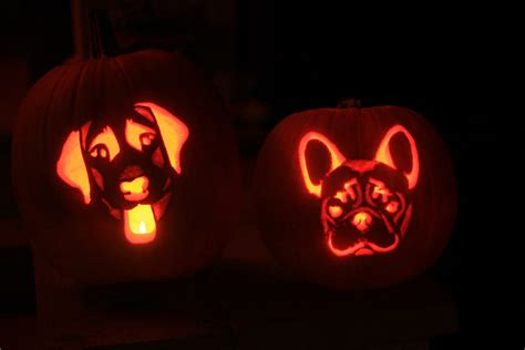 pumpkin and dogs pumpkin carving stencils and pics of our bailey and bam o lanterns ballwalkpark