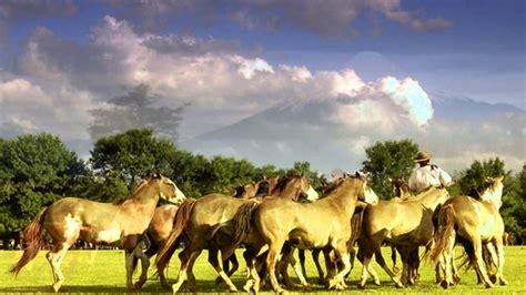 imagenes naturales de chile paisajes de chile youtube