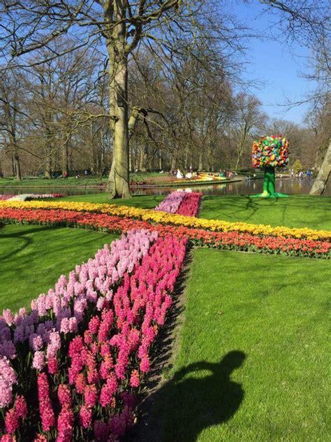 Keukenhof Tulip Gardens Thingtodoin Amsterdam Flower Garden Amsterdam