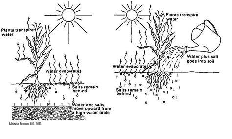 wiring diagram for greenhouse wiring wiring diagram