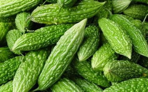obat herbal diabetes alam i nayakon