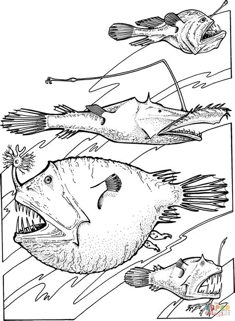 deep sea angler fishes coloring page free printable