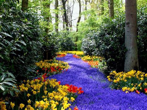 imagenes de paisajes jardines jardines y paisajes con flores im 225 genes taringa
