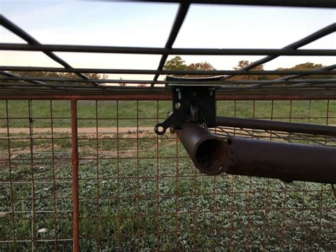 swing door hog trap plans pig trapping lessons learned the truth about guns