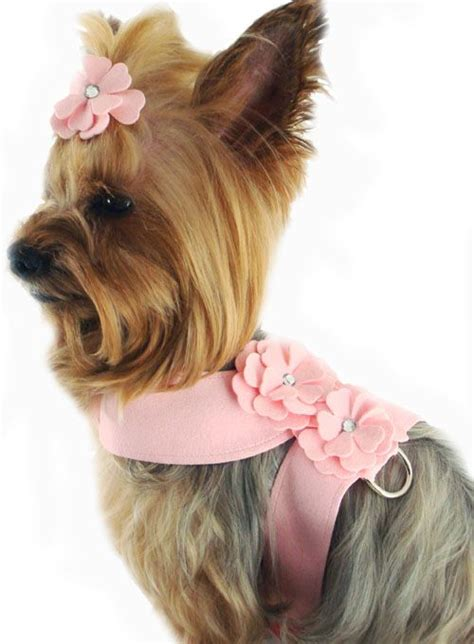 clothes for teacup yorkies 206 best images about yorkie clothes on free pattern yorkie and diy