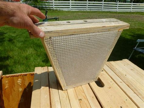 top bar beekeeping supplies 635 best bees images on pinterest bees beekeeping and