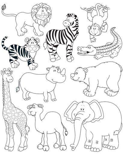 imagenes de animales juntos para colorear colorear animales salvajes