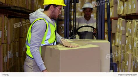 warehouse worker packing boxes on forklift stock