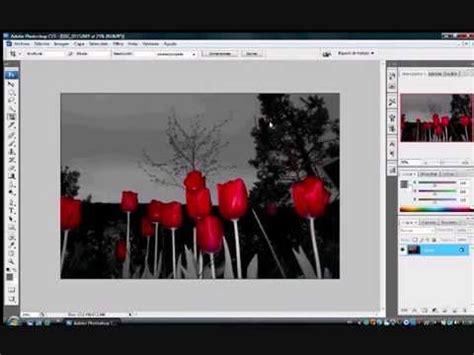 poner imagen blanco y negro en paint c 243 mo dejar partes en color y otras en blanco y negro