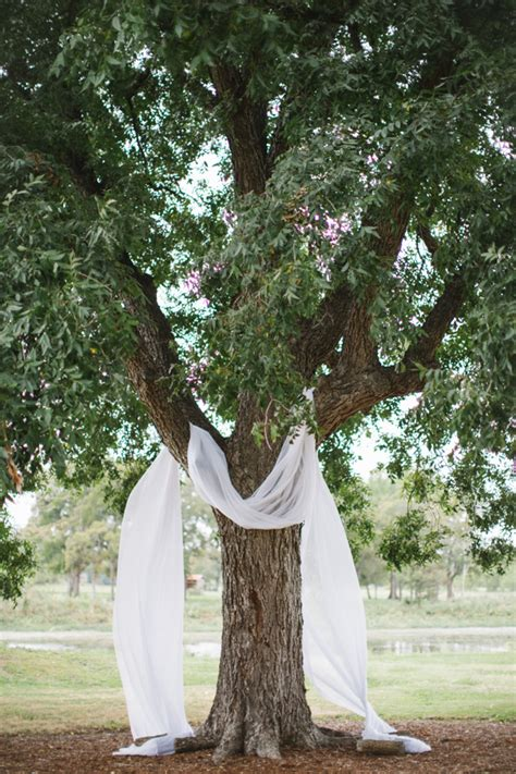 Wedding Backdrop Trees by Drape Fabric A Tree To Simple But Stunning