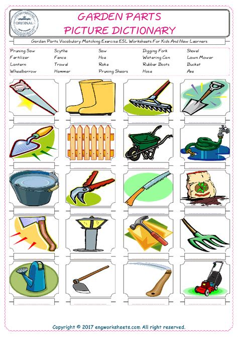 garden parts vocabulary matching exercise esl worksheets