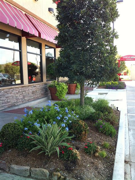 home page shades of texas nursery landscaping the