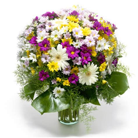 co de fiori beograd 아이한 해외꽃배달 해외 180여개국 국제꽃배달 27년 경력의 전문기업 미국 일본 중국 호주 독일 프랑스