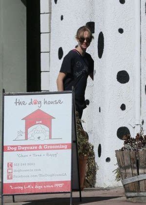 the dog house los angeles amanda seyfried in spandex at the dog house for daycare in los angeles