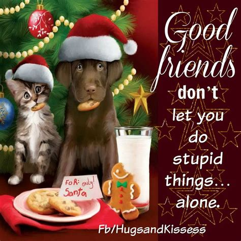 cute christmas quotes  friendship pictures   images  facebook tumblr