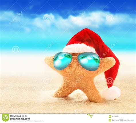 in the summer starfish in sunglasses on summer and santa hat
