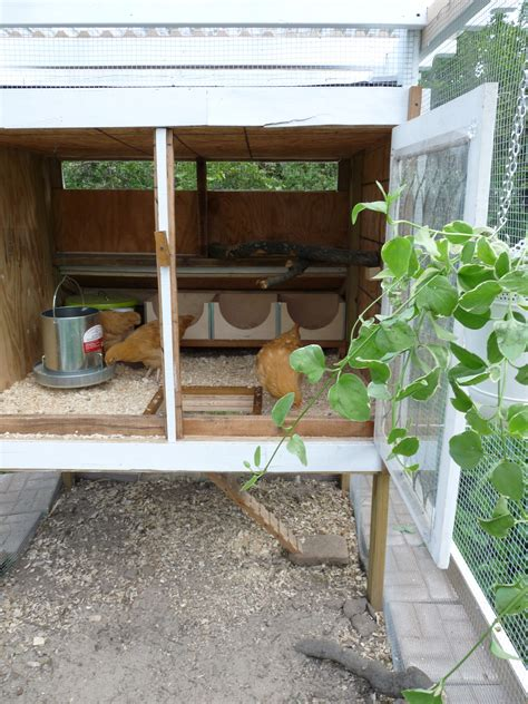 Backyard Chickens Detroit Detroit Chicken Coop With A Pergola Backyard Chickens