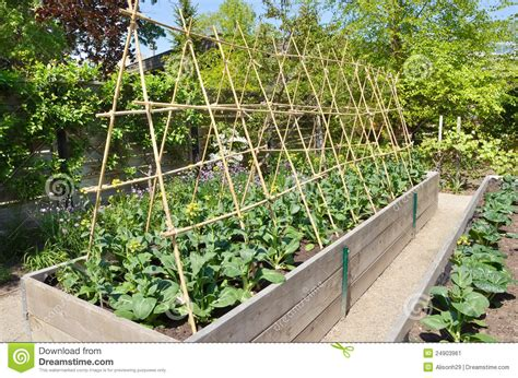 kitchen garden stock image image of landscape seed