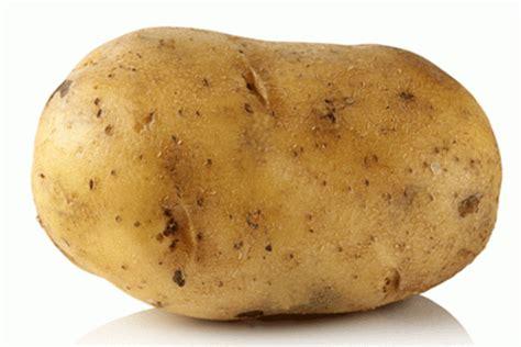 What Is A Potato this potato needs a mashin