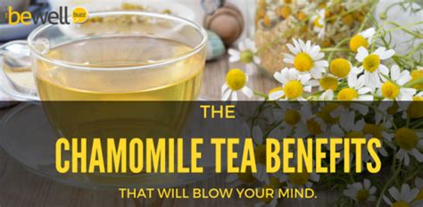 Http Www Bewellbuzz Journalist Buzz 3 Ways Detox Harsh Substances by Herbal Tea Archives Be Well Buzz