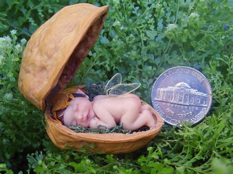 Baby Wear Walnut sale miniature baby in walnut shell