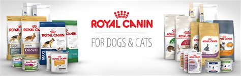 royal canin prescription food royal canin cat food sale zooplus