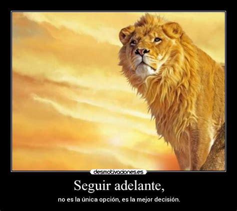 imagenes de leones tristes usuario smokelion desmotivaciones