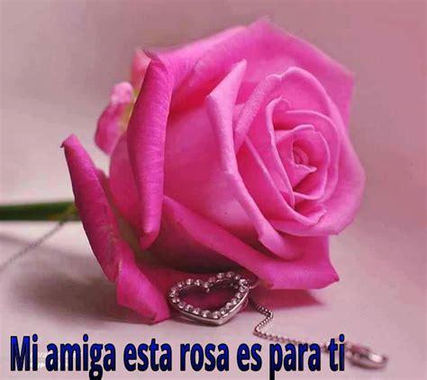 imagenes rosas para mi amiga la tablita del pastelero el portal de loterias feliz