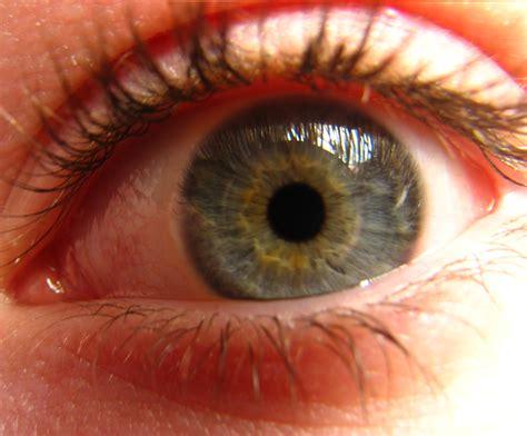 eye pattern meaning eyes artitaminha