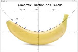 quadratic function in real life
