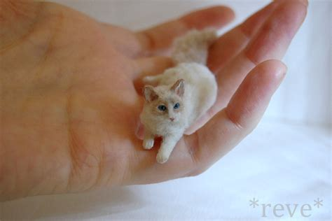 Handmade Cat - miniature ragdoll cat handmade sculpture by