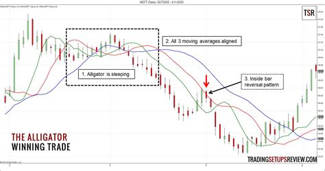 anti pattern trading compare brokers india trading rules bill williams forex