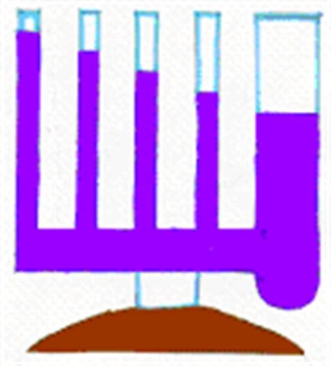 vasi capillari il fenomeno della capillarita