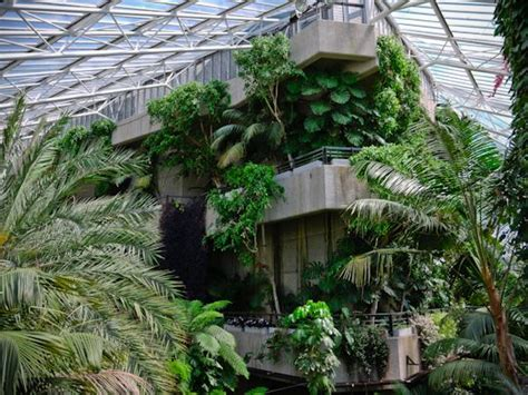 conservatory   barbican centre london  chamberlin