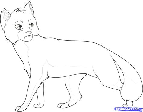 warrior cat coloring pages to download and print for free