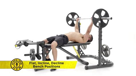 xrs 20 bench gold s gym xrs 20 olympic rack and bench youtube