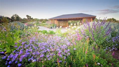 Auckland Botanic Gardens Auckland Botanical Gardens Garden Ftempo