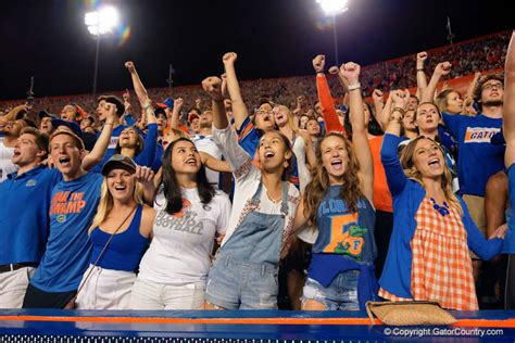 florida gators fan pd s picks pans week 7 for the florida gators vs lsu