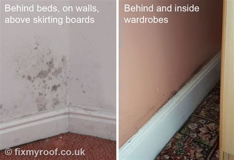 what causes mould on bedroom walls how to get rid of black mould on bedroom walls www