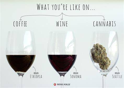 coffee and cannabis books your brain on coffee wine and cannabis wine folly
