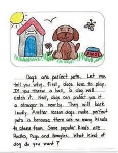 My Favorite Pet Essay by 17 Best Ideas About Opinion Writing On Opinion Writing Second Grade Opinion