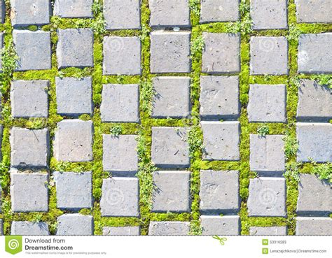Concrete Block Floor Plans by Paving Stone Style With Grass Seamless Pattern Stock Image