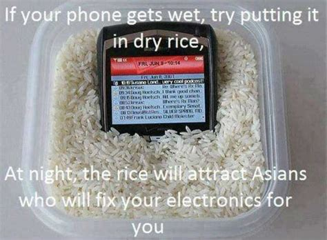 Dry Phone Meme - if your phone gets wet try putting it in dry rice