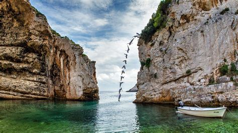 bull cliff dive bull cliff diving the world s oldest sport